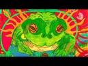 Hamilton's Pharmacopeia - Bufo The Psychedelic Toad