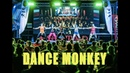 DANCE MONKEY Tones and I ZUMBA choreo