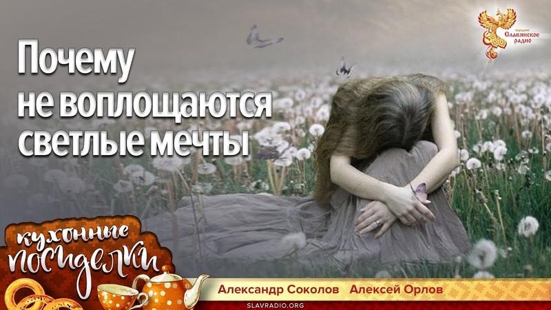 Почему не воплощаются светлые мечты. Алексей Орлов и Александр Соколов