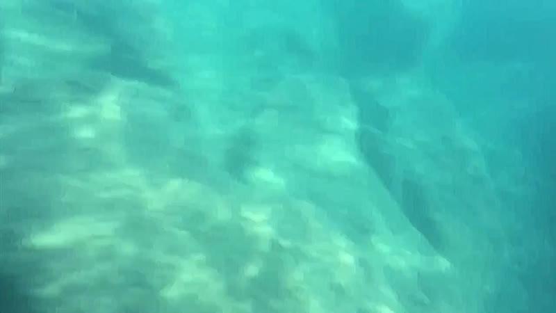 Sea 2019 No ordinary girl ost H2O просто добавь воды