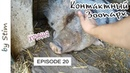 Молдавские будни 20 ZOOCLUB Контактный зоопарк