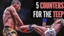 5 COUNTERS FOR THE MUAY THAI TEEP!