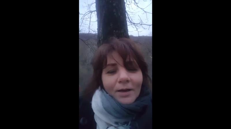 Поздравления Бай Ю видео с голосами ЧЕРНОВИК