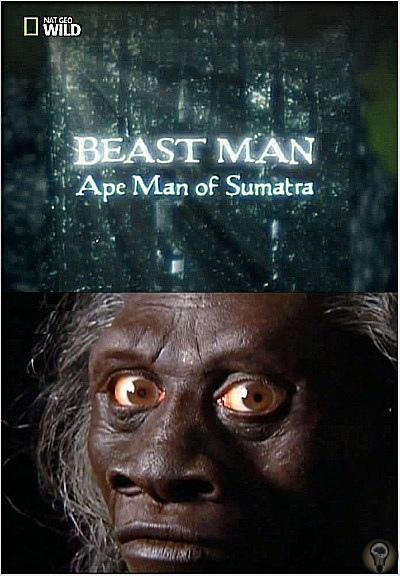 По следам мифических чудовищ. Обезьяночеловек с Суматры