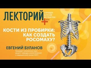 Лекция Евгения Буланова «Кости из пробирки: как создать Росомаху?» (с переводом на русский жестовый язык)