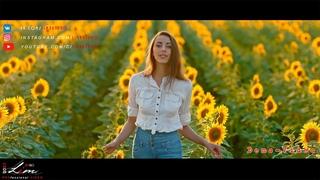 /2021-07-17/ In the sunflower field /Demo-Video/