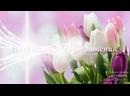 Красивое поздравление с Днем 8 Марта! Музыкальная видео открытка. Международный Женский День..mp4