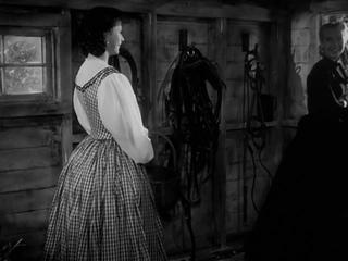 Чужая женщина (1946) / The Strange Woman (1946)