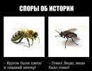 Фотоальбом Юрия Светлова