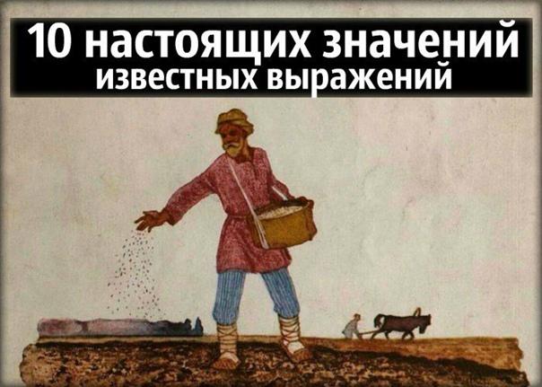 10 настоящих значений известных выражений В русском языке, славящемся образностью, полным-полно идиом, употребляемых всеми. Нам понятно современное значение таких фраз как «шут гороховый» или