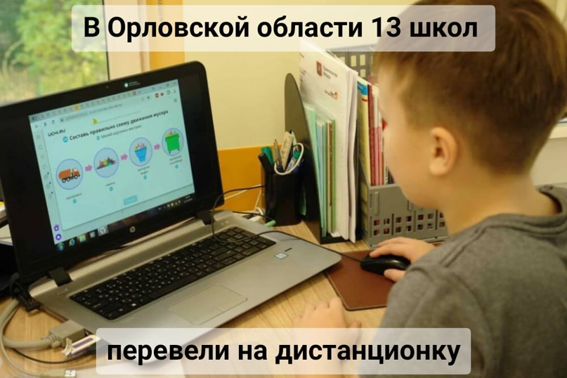 В Орловской области 13 школ перевели на дистанционку