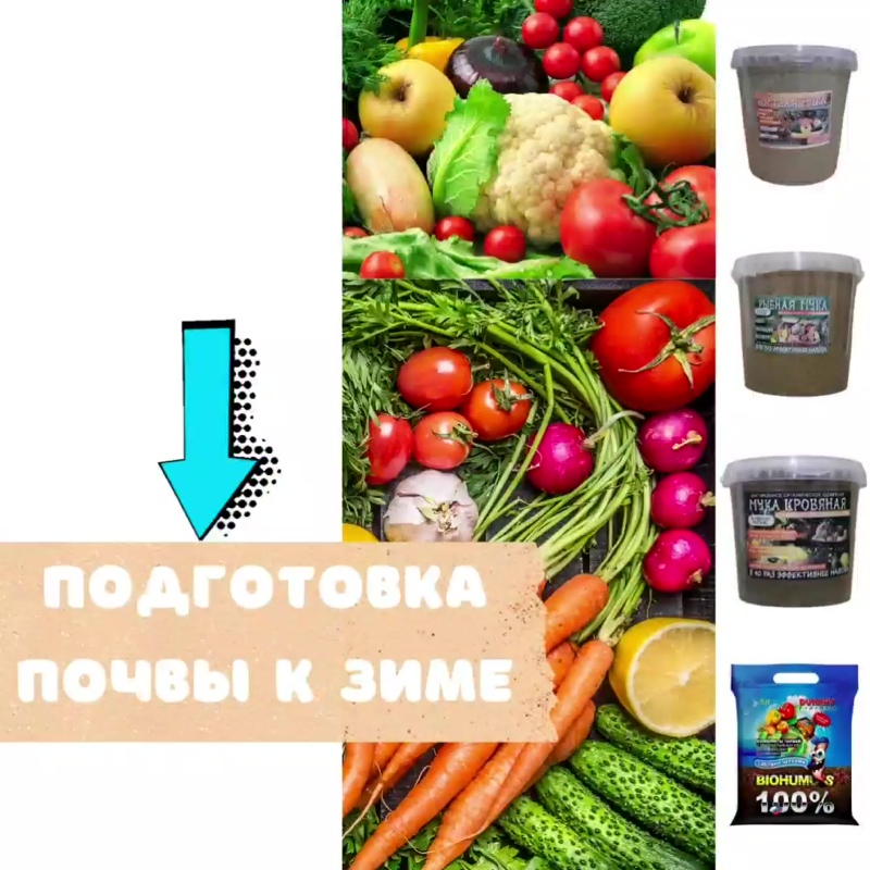 Подготовка почвы к зиме.mp4