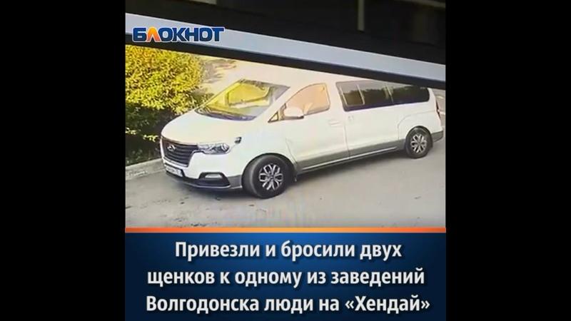 Видео от Блокнот Волгодонск Новости Волгодонска