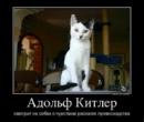 Персональный фотоальбом Вадима Гладышева