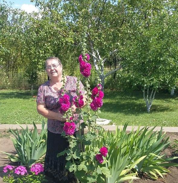 Люда Анакина, 64 года, Оренбург, Россия