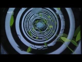 Alice's Adventures in Wonderland [Choreography: Christopher Wheeldon] - Cuthbertson / Polunin /... The Royal Ballet 2011