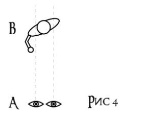 О зрении в поединке, изображение №3