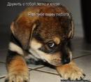 Личный фотоальбом Марійки Здрок