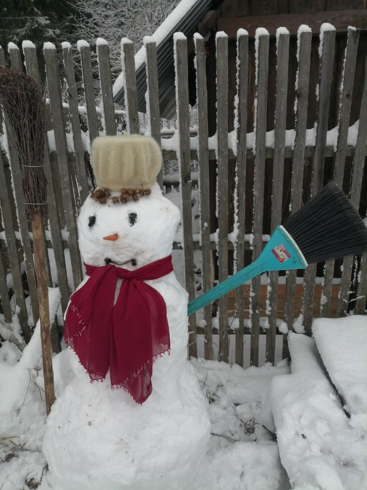 Появился во дворе он в холодном ноябре.