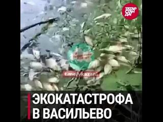 То, что обсуждали в соцсетях Татарстана 27 июля 2021 года