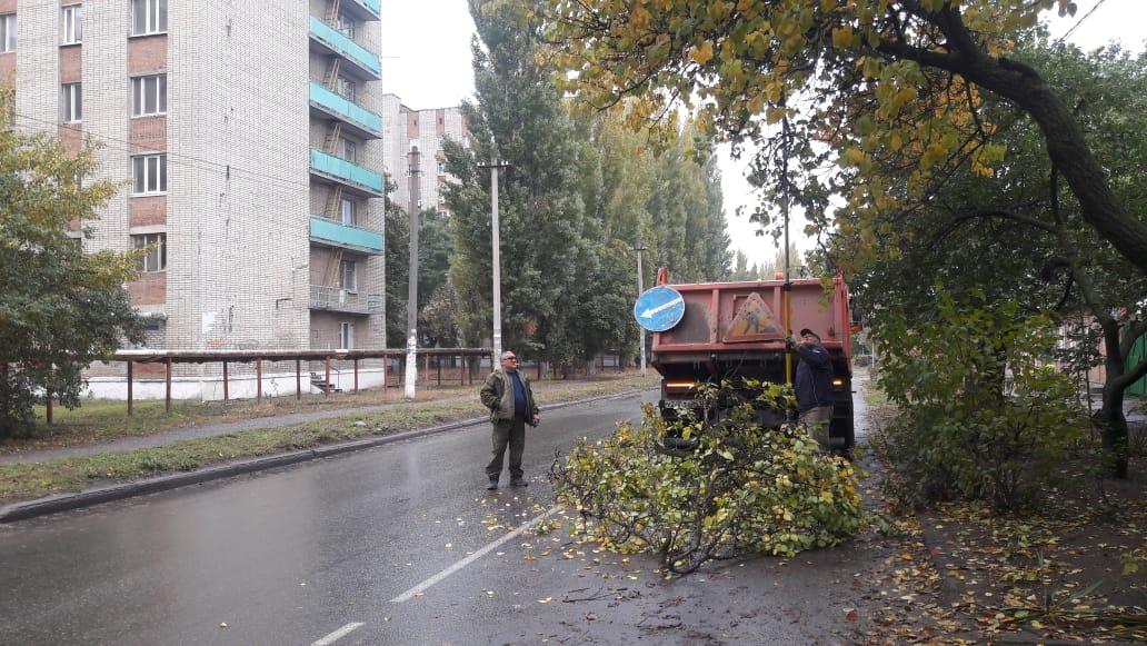 МКУ «Благоустройство»: проведены работы по обрезке ветвей деревьев вдоль дороги по ул. Лизы Чайкиной