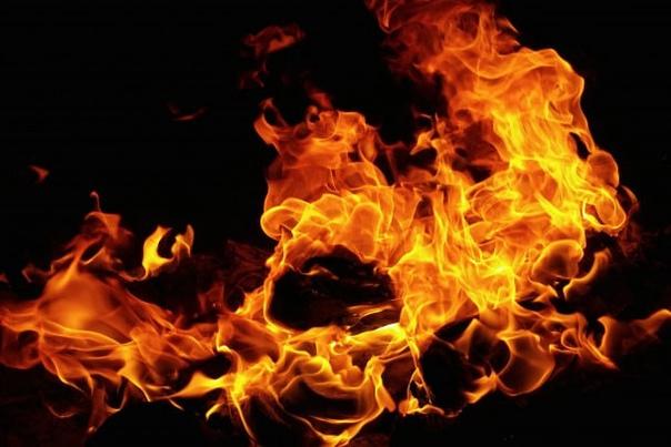 Мужчина погиб при пожаре в садоводстве под Лугой. ...