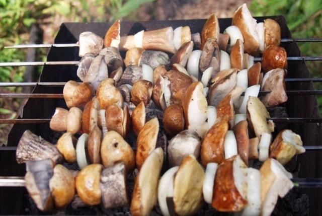 Овощи на шампурах: рецепты, советы, идеи