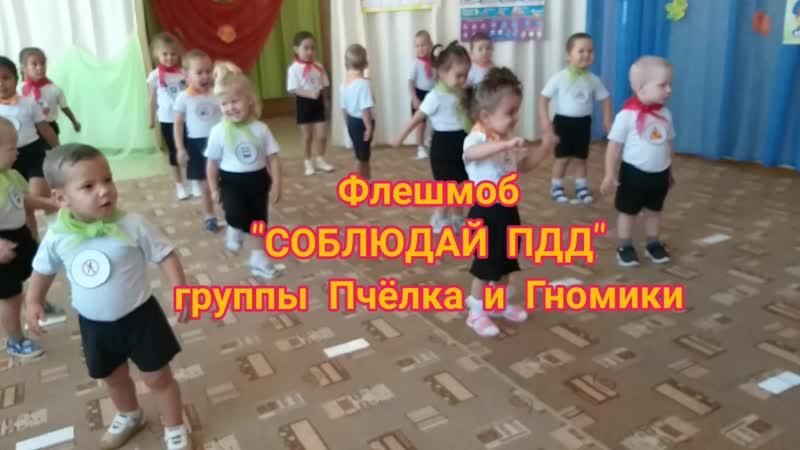 ФЛЕШМОБ СОБЛЮДАЙ ПДД mp4