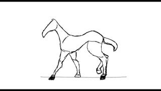 Почти лошадь - черновая анимация, походка