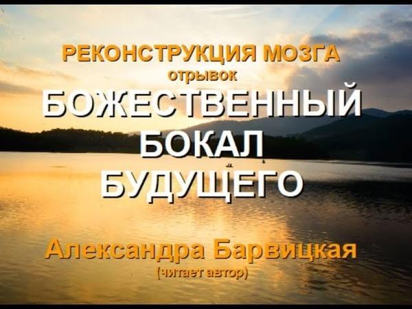 БОЖЕСТВЕННЫЙ БОКАЛ БУДУЩЕГО РМ Александра Барвицкая Женьшеневая Женщина