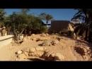ферма крокодилов на джербе