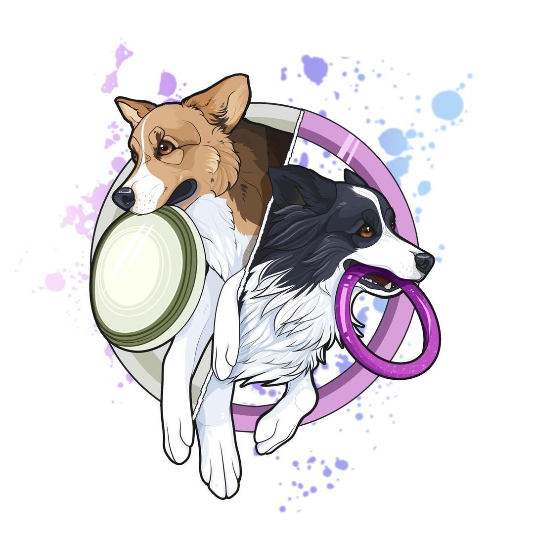 Афиша Тюмень Dog Puller & Dog Frisbee