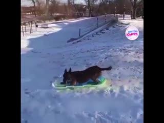 Прям как ребенок))