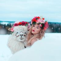 Фотография профиля Кати Адушкиной ВКонтакте