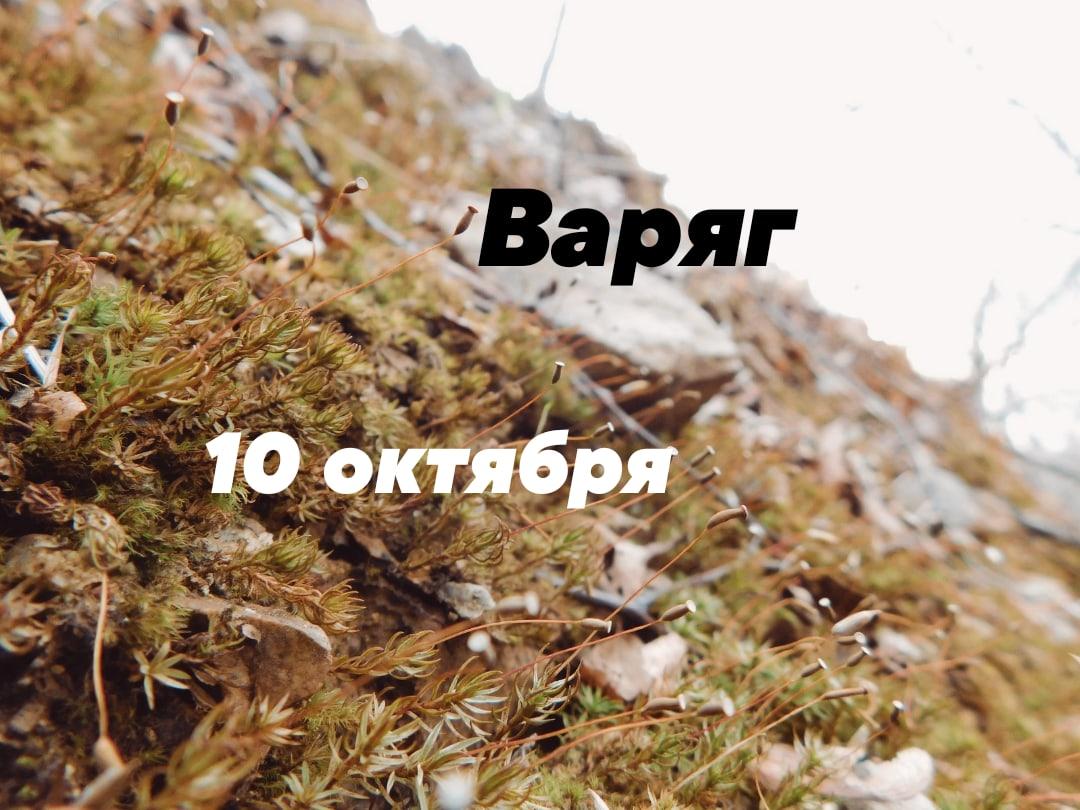 Афиша Владивосток Ебучий глинт