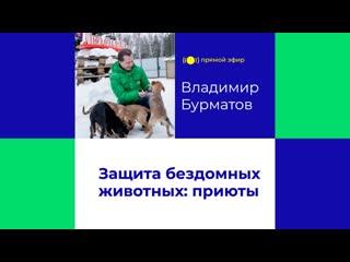 Защита бездомных животных: приюты | Прямой эфир (В. Бурматов, запись от )