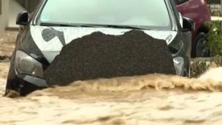 Maltempo, violenti temporali causano inondazioni nella Germania centrale
