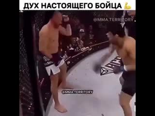 Русский Шторм Александр Шлеменко heccrbq injhv fktrcfylh iktvtyrj
