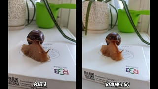 🔥Realme 7 5G vs Google Pixel 3. Тест камер видео + фото!🔥